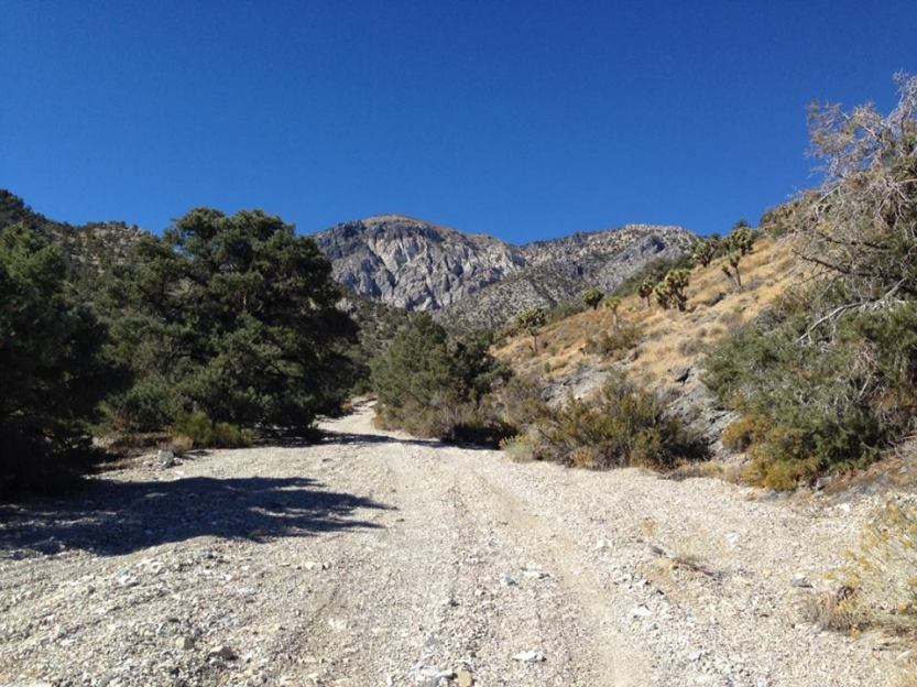 Start of the ascent on a 4wd track