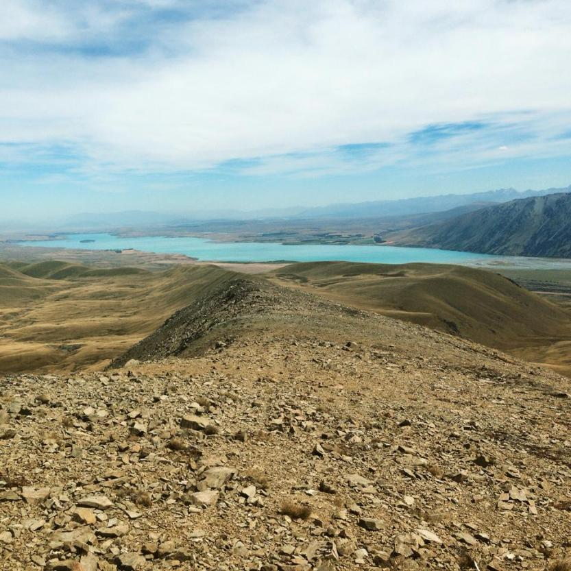 You can get a break from tussock!